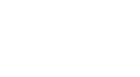 Priority 1 - Recovery and Response